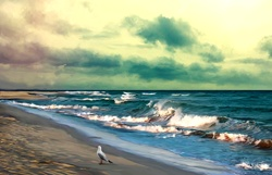 Seascape with bird on beach