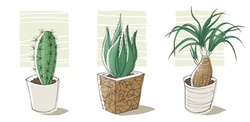 Plants growing in pots