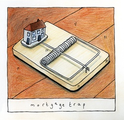 Mouse trap with small house