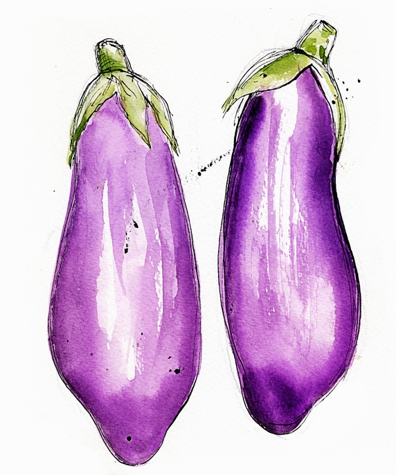 Close up of two aubergines