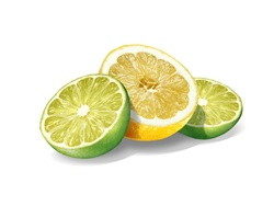 Lemon and lime slices on white background