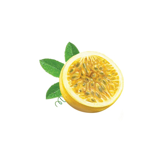 Close up of half of lemon on white background