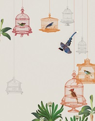 Brightly coloured birds in birdcages