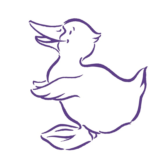 Duck on white background