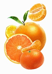 Close up of fresh juicy oranges