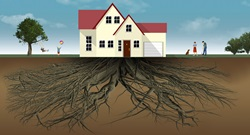House with large roots underground