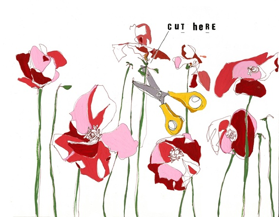Scissors and flowers on white background