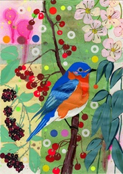 Eastern Bluebird sitting on branch with blossom and berries