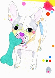 Painting of French Bulldog chewing bone