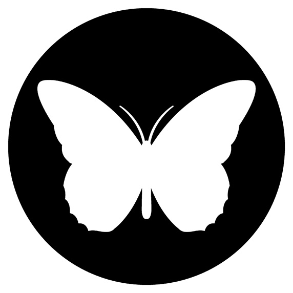 Butterfly in black circle on white background