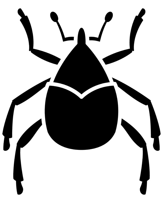 Tick on white background