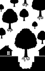 Trees flying above houses