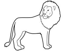 Lion on white background