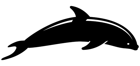Silhouette of dolphin on white background